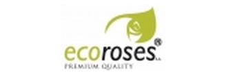 Плантации роз Эквадора