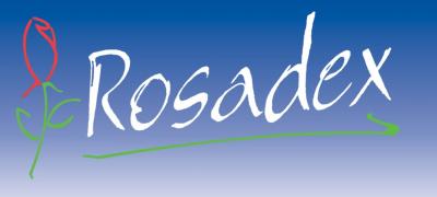 rosadex Плантации роз Эквадора