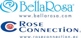 bellarosa Плантации роз Эквадора
