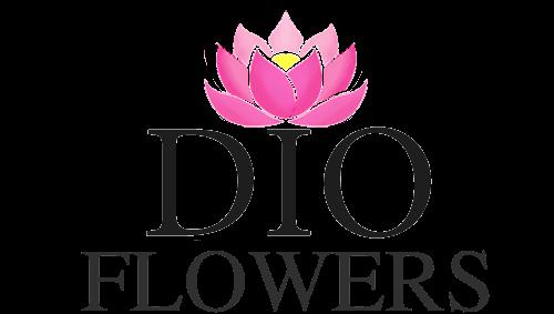 dioflowers цветы из Эквадора