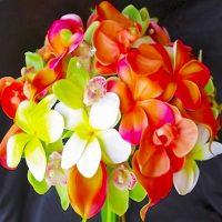 Орхидеи MIX