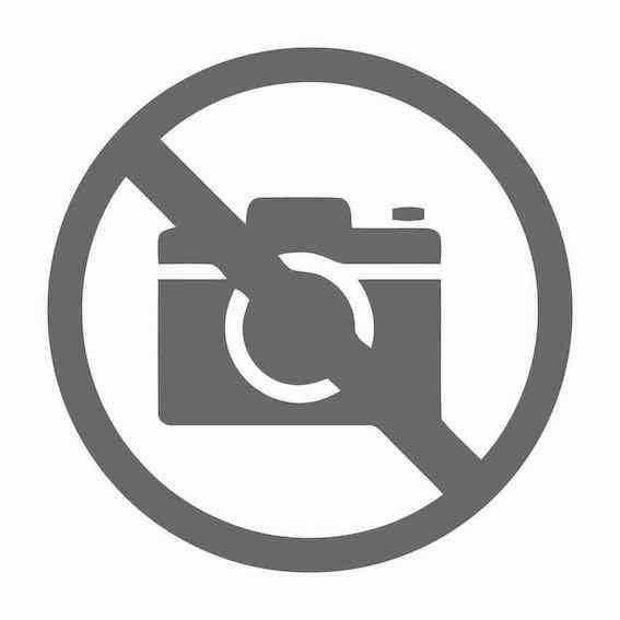 Горшечные цветы и растения оптом Wisteria Sinensis Prolific / Okyama Met Knop от 1шт из Голландии с доставкой по России